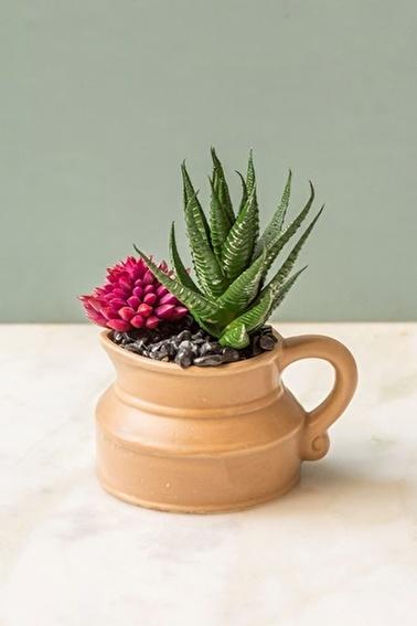 Arma House Marrakesh Kaktüslü Vazo (4) ( Yapay Çiçek ) Renkli